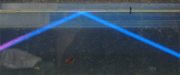 Laser beam causing fluorescence of water in fish tank.  The blue is probably from bacterial cells in the water, and the red from chlorophyll from algae growing on the walls of the tank.