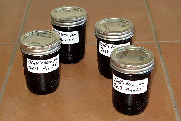 The 4 cups of jam are not a very impressive showing for an afternoon's work.