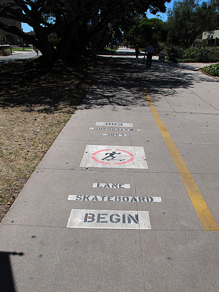 There is even a separate skateboard lane on one of the main campus paths (taking up part of a wide walkway and paralleling a divided bike path).