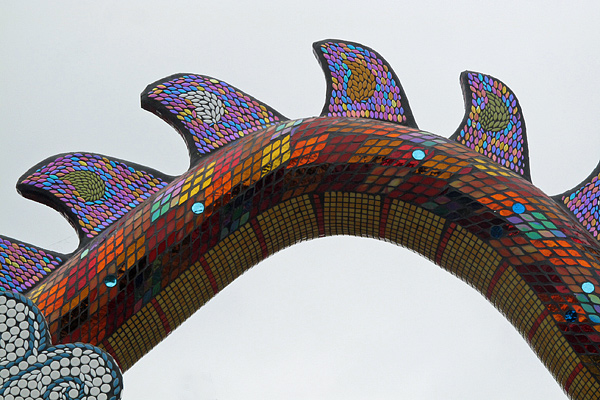 dragon-fins