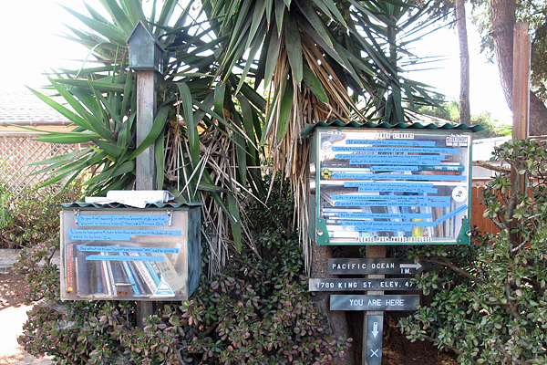 little-free-library-king