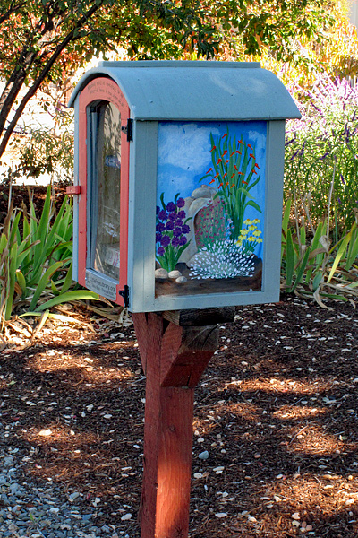 little-free-library-floral-1